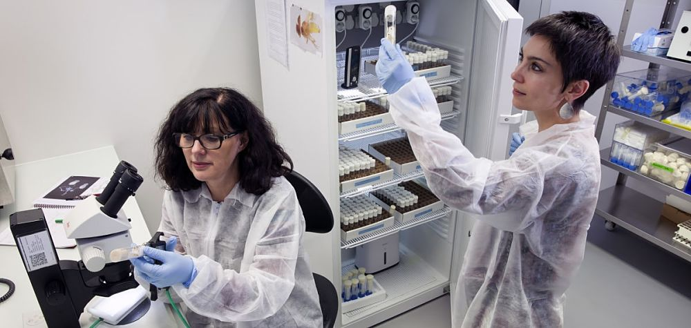Workers-inside-the-Drosophila-lab-crees-montpellier